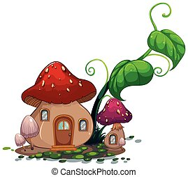 casa, foglie, verde, fungo