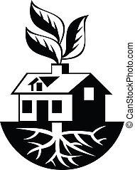 casa, folhas, raizes, broto