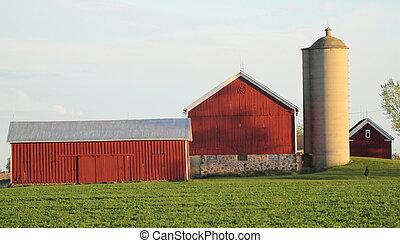 casa granja, granero, campo verde