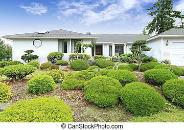 casa, história, branca, arbustos, um