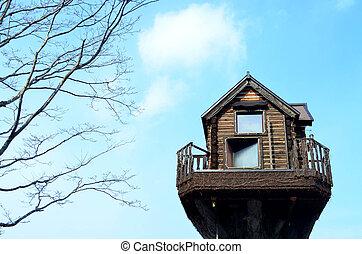 casa legno, albero