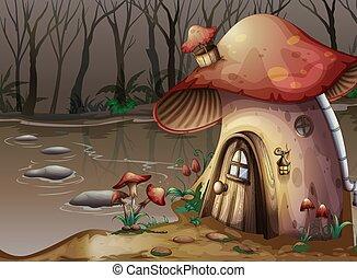 casa, luego, hongo, pantano