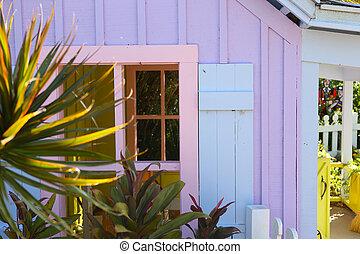 casa, nápoles, madera, florida, colorido