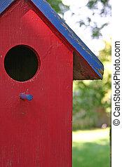 casa pássaro