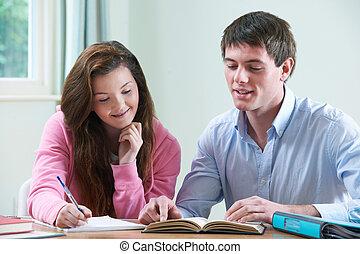 casa, studiare, ragazza adolescente, insegnante privato