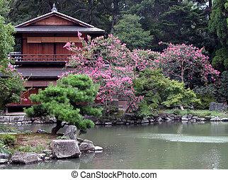 casa, su, jardín japonés