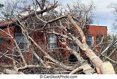 casa, tijolo, árvore, caído