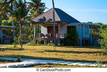 casa, tropicale, clima, contemporaneo, piccolo