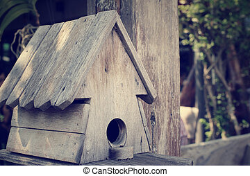casa, uccello