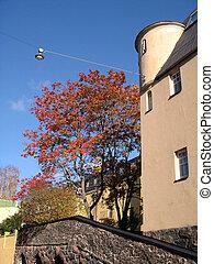 casa, y, otoño, árbol