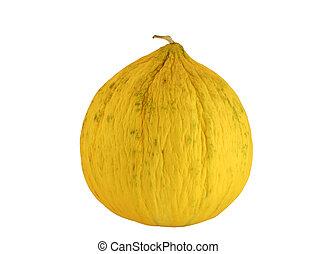 Isolated casaba melon