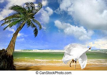 casado, havaí, kauai, obtendo