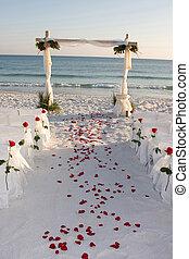 casamento praia, caminho, pétalas rosa