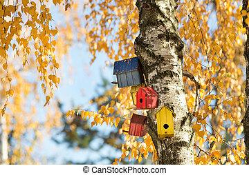 casas, árbol, pájaro