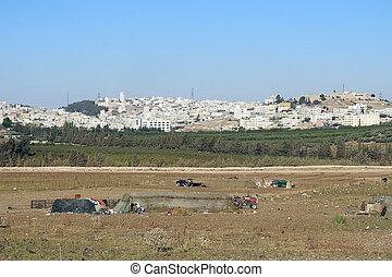casas, edificios, capital, jordania, amman