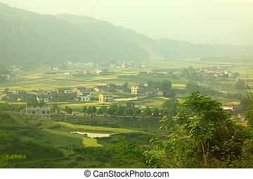 casas, terra cultivada, china