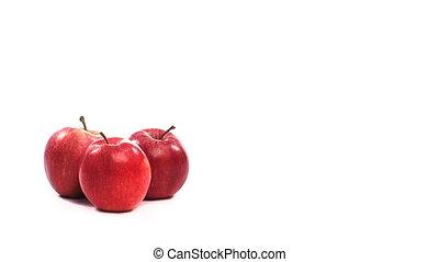 casato, video, metraggio, di, mele
