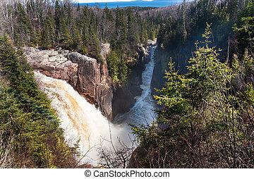 cascadas, bosque boreal