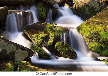 cascade, moussu, rochers