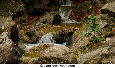 Cascade of boulders in mountine creek with red fallen leaves