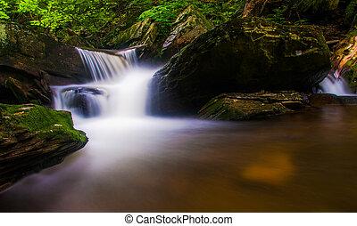 Cascade on a stream in Rickett's Glen State Park, ...