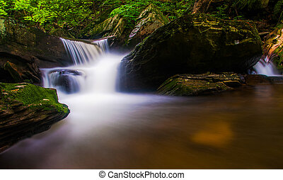 Cascade on a stream in Rickett's Glen State Park,...
