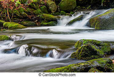 cascade on the little stream with stones in forest