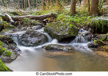 small mountain creek in a woodland