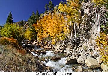 Cascade water falls - Scenic cascade water falls in Colorado...