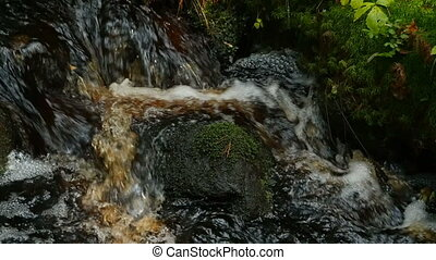 cascade waterfall of a forest stream slow motion, close to