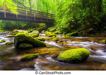 Cascades and walking bridge over the Oconaluftee River, at ...