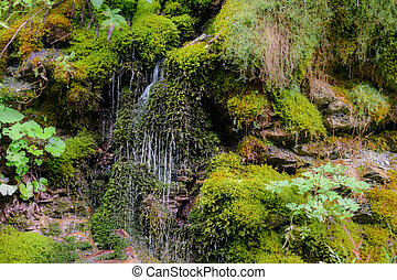 Cascades of waterfall over rock ledges. Nature landscape of waterfall cascade with beautiful green scenery.