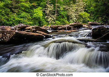 Cascades on Little River, in Dupont State Forest, North ...