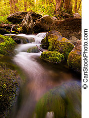 Cascades on South River, Shenandoah National Park, Virginia.