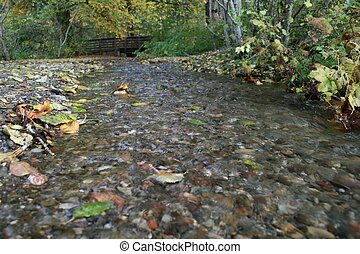 Cascading Fall Water
