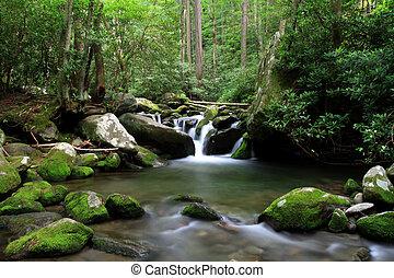 cascading mountain stream