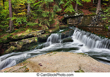 Cascading Stream in Mountain Forest