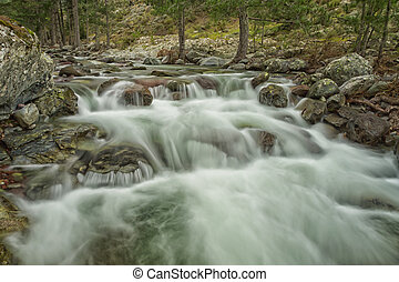 Cascading Tartagine river near Mausoleo in northern Corsica...