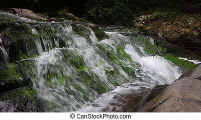 Cascading Waterfall - River water falling over mossy rocks...