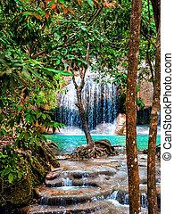 cascata, giungla
