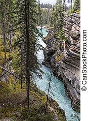 cascata, in, il, canadese, roccioso, mountains-, jasper parco nazionale