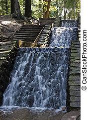 cascata, in, il, foresta