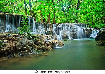 cascata, in, il, foresta, kanchanaburi, tailandia