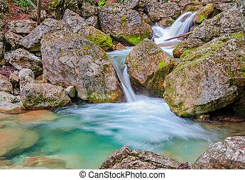 cascata, in, il, primavera, foresta