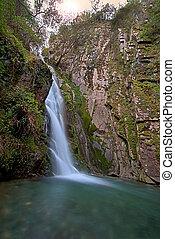 cascata, in, profondo, foresta
