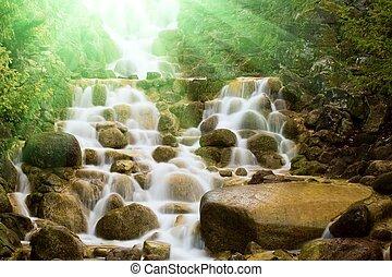 cascata, in, uno, foresta