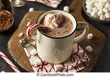 caseiro, menta, chocolate quente