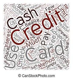Davis payday loan image 7