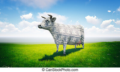Cash Cow - Cash cow standing in the lush green field on a...