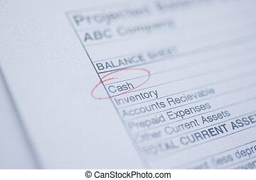 Cash Flow  - Macro shot of general balance sheet